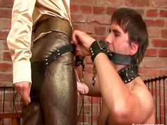 Cbt and sexy strapon ass fucking for him
